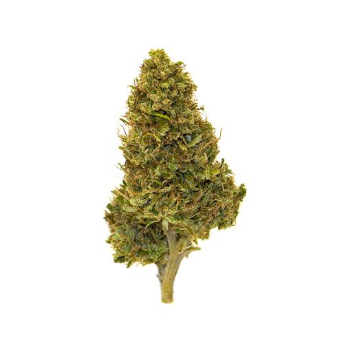 Biscotti - Serra - 25 grammi