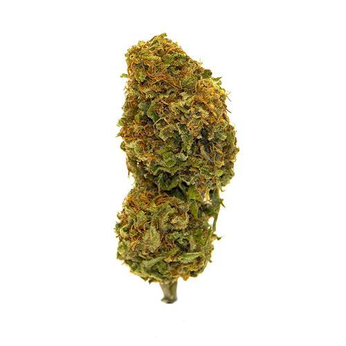 Cincinnati Charleston - Serra - 15 grammi