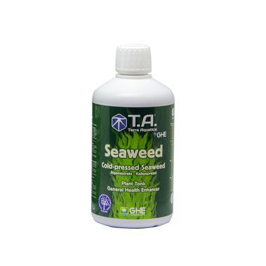 T.A. - Seaweed